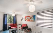 Condos for Rent/Lease in calle 6, Playa del Carmen, Quintana Roo $425 monthly