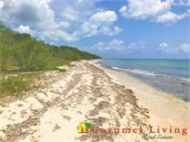 Lots and Land for Sale in South Coast, Quintana Roo $400,000