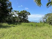 Lots and Land for Sale in Dominical, Puntarenas $275,000