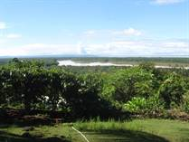 Farms and Acreages for Sale in Ojochal, Puntarenas $2,999,000