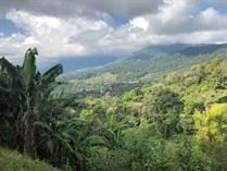 Homes for Sale in Tinamastes, Puntarenas $249,000
