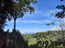 Lots and Land for Sale in Uvita, Puntarenas $398,000