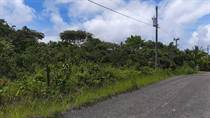 Commercial Real Estate for Sale in Boca Chica, San Lorenzo, Chiriquí  $90,000