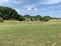Lots and Land for Sale in SAN ANTONIO, Quebradillas, Puerto Rico $36,500