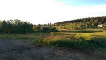 Lots and Land for Sale in Lac la Hache, British Columbia $45,500