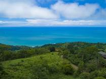 Lots and Land for Sale in Escaleras, Puntarenas $224,000