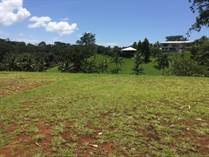 Lots and Land for Sale in Naranjito, Quepos, Puntarenas $129,000