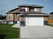 Homes for Sale in Lanigan, Saskatchewan $349,000
