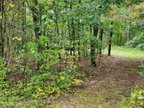 Lots and Land for Sale in Wisconsin, Lyndon Station, Wisconsin $49,900