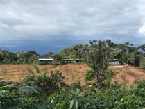 Homes for Sale in San Isidro De El General, Puntarenas $475,000