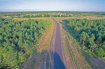 Lots and Land for Sale in Minnesota, Zimmerman, Minnesota $74,900