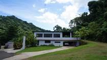 Homes for Sale in Rio Cañas Abajo, Mayaguez, Puerto Rico $750,000