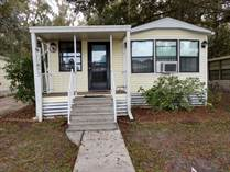 Homes for Sale in Dead River Road, Thonotosassa, Florida $18,500