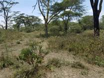Lots and Land for Sale in Naivasha KES550,000,000