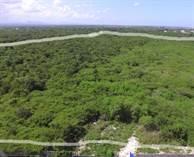 Lots and Land for Sale in Bavaro, La Altagracia $845,000