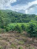 Lots and Land for Sale in Ixtapa, Puerto Vallarta, Jalisco $699,000
