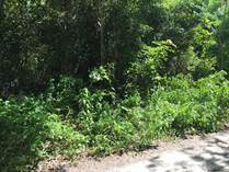 Lots and Land for Sale in Fraccionamiento Ixchel, COZUMEL, Quintana Roo $27,500