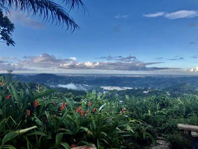 Mountain Homes For Sale in Puerto Rico