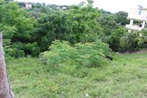 Homes for Sale in Bo. Río Grande, Rincon, Puerto Rico $50,000