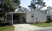 Homes for Sale in Walden Woods, Homosassa, Florida $30,000