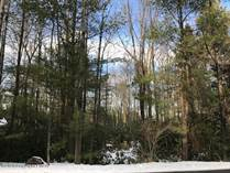 Lots and Land for Sale in Pocono Pines, Pennsylvania $110,000