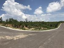 Lots and Land for Sale in Cabo San Lucas Pacific Side, Cabo San Lucas, Baja California Sur $52,000