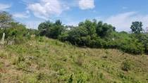Lots and Land for Sale in Carr. 414, Aguada, Puerto Rico $67,900