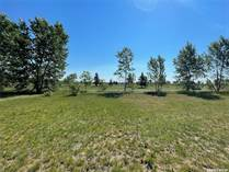 Lots and Land for Sale in Rosthern, Saskatchewan $39,900
