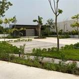 Lots and Land for Sale in Cholul, Merida, Yucatan $1,095,113
