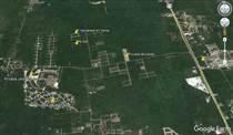 Homes for Sale in Komchen, Yucatan $7,561,592