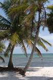 Lots and Land for Sale in Mahahual, Quintana Roo $180,000