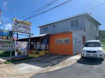 Commercial Real Estate for Sale in Quebrada Fajardo, Fajardo, Puerto Rico $175,000