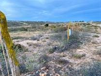 Lots and Land for Sale in Ahorcadita La Tunas, Todos Santos, Baja California Sur $25,000
