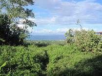 Lots and Land for Sale in Cabrera, Maria Trinidad Sanchez $85,000