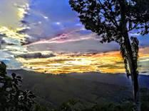 Lots and Land for Sale in Tinamastes, Puntarenas $59,000