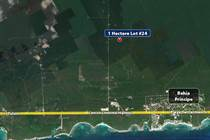 Homes for Sale in Chemuyil, Quintana Roo $69,000