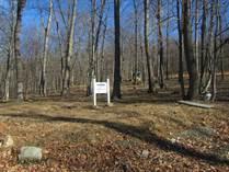 Lots and Land for Sale in Berkeley Springs, West Virginia $68,000