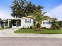 Homes for Sale in Forest Lake Estates, Zephyrhills, Florida $15,900