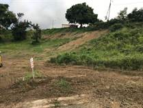 Homes for Sale in Bo. Calvache, RINCON, Puerto Rico $0