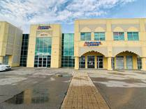 Commercial Real Estate for Sale in Mississauga, Ontario