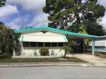 Homes for Sale in Shady Lane Oaks, Clearwater, Florida $38,900