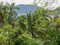 Lots and Land for Sale in Golfito, Puntarenas $235,000