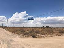 Lots and Land for Sale in Victorville, California $1,750,000