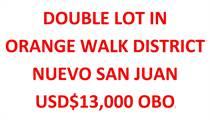 Homes for Sale in Orange Walk , Orange Walk $13,000