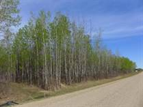 Lots and Land for Sale in Mulhurst, Wetaskiwin County, Alberta $975,000