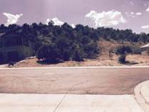 Lots and Land for Sale in Ashdown Forest, Cedar City, Utah $50,000