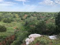 Recreational Land for Sale in Cottle County, Cee Vee, Texas $402,500