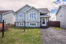 Homes for Sale in Newfoundland, Paradise, Newfoundland and Labrador $265,000
