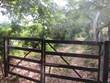 Lots and Land for Sale in Lo De Marcos, Nayarit $495,000