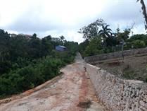 Lots and Land for Sale in Cabrera, Maria Trinidad Sanchez $99,900